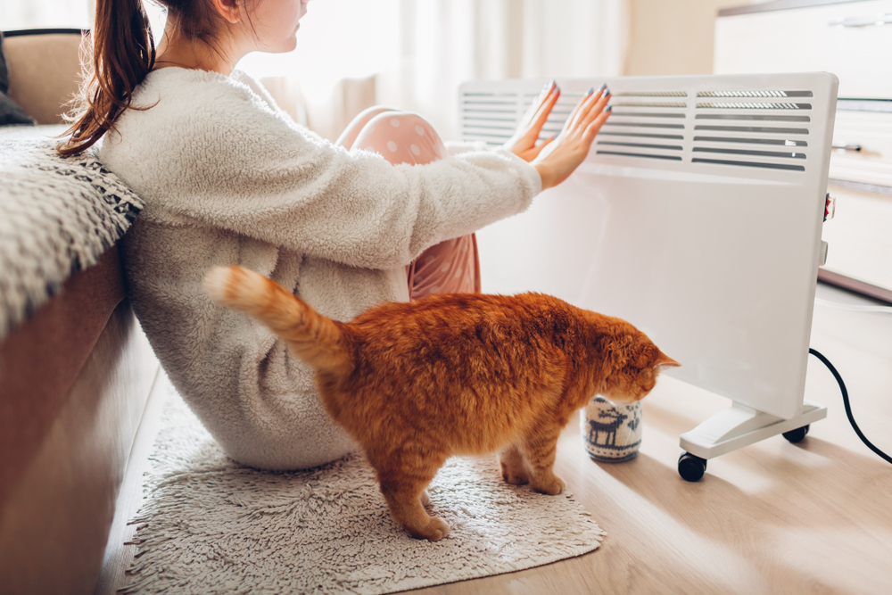 Woman warming her hands with cat by the radiator.